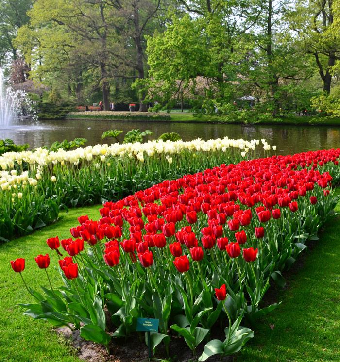 Atlanta Botanical Garden, GA