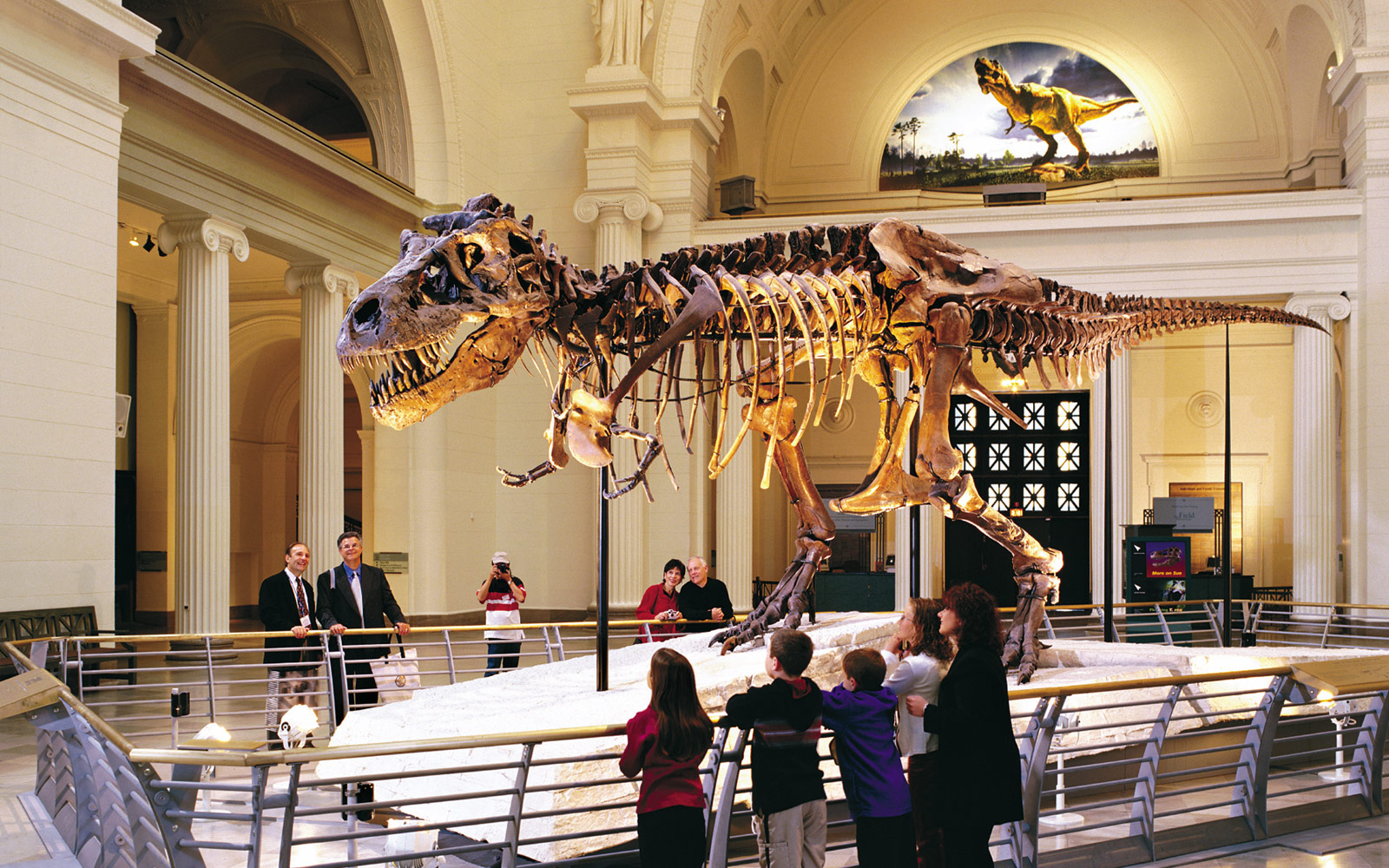 Hmuseum Of Natural History Exhibits